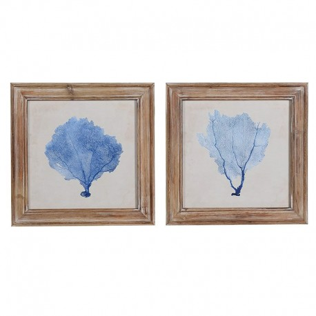 Kolekcja obrazków GORGONIA BLUE