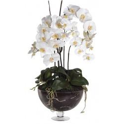 Kwiat WHITE ORCHID 79cm