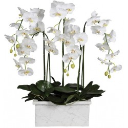 Kwiat WHITE ORCHID MARBLE